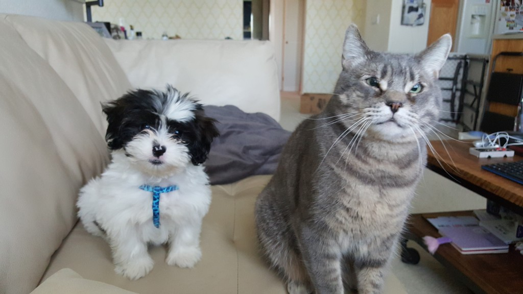 Ella and Chubs